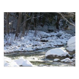 Bearcamp River 1 Post Card