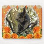 bearcat-00009-85x85 tapetes de ratones