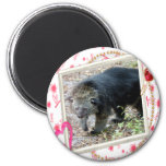 bearcat-00016-85x85 iman para frigorífico