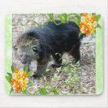 bearcat-00018-85x85 mouse pads