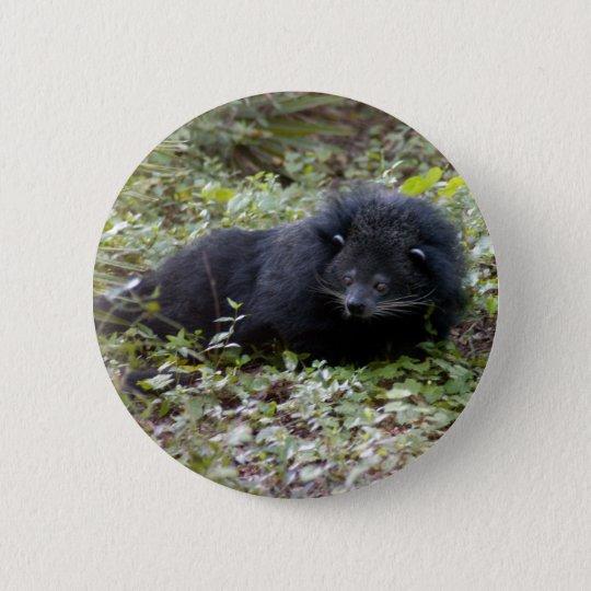 Bearcat Button