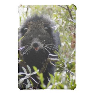 Bearcat  case for the iPad mini