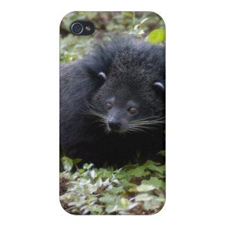 Bearcat i iPhone 4/4S cases