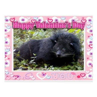 Bearcat Valentines Postcard
