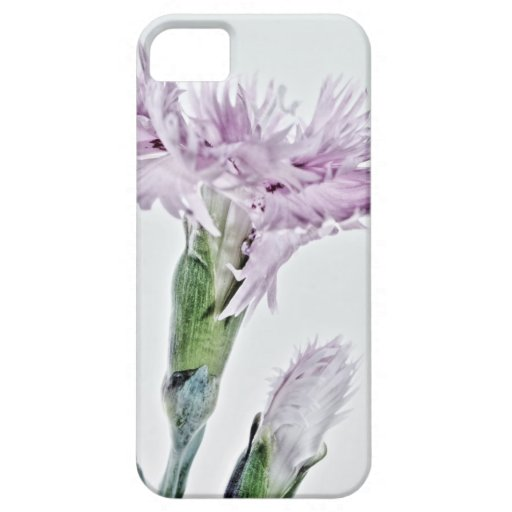 Beard carnation photographed by Tutti iPhone 5/5S Case