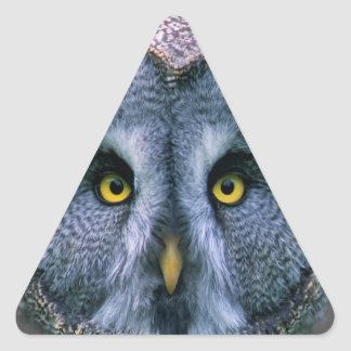 Beard fogy (Strix nebulosa) Triangle Sticker