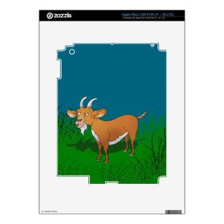 Bearded brown goat iPad 3 skin