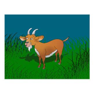 Bearded brown goat postcard