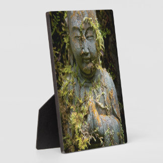 Bearded Buddha Statue Garden Nature Photography Plaques