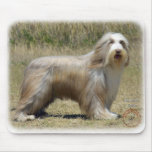 Bearded Collie 9P042D-005 Mouse Pads