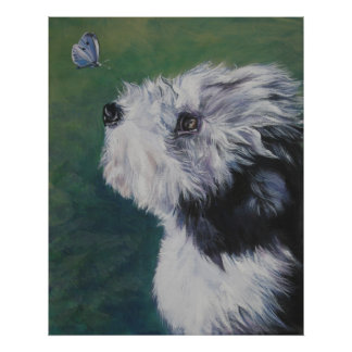 bearded collie butterfly art print