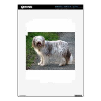 Bearded Collie Dog Skins For iPad 3
