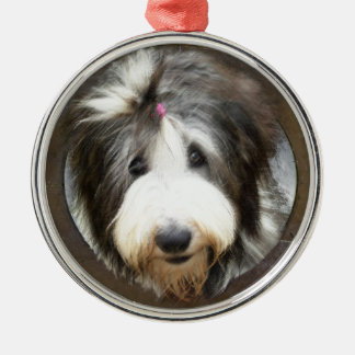 Bearded collie face in old wooden frame metal ornament