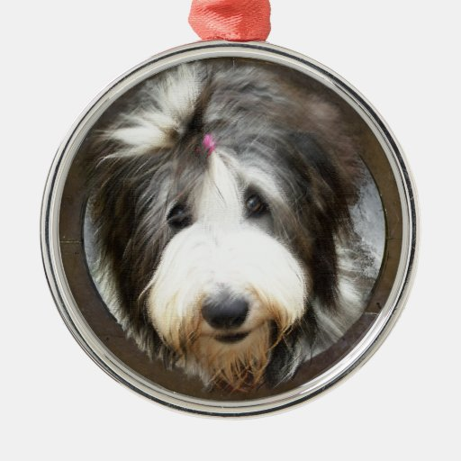 Bearded collie face in old wooden frame ornament