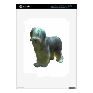 bearded collie full.png skin for iPad 3