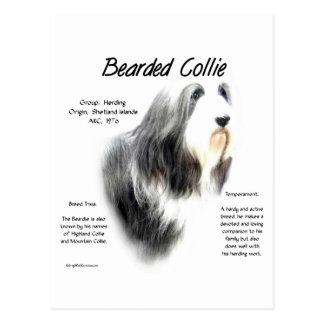 Bearded Collie History Design Postcard