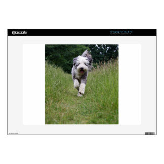 bearded collie in motion.png laptop decals