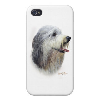 Bearded Collie Cover For iPhone 4