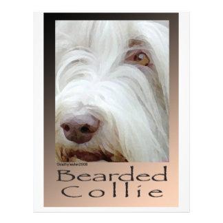 Bearded Collie Letterhead