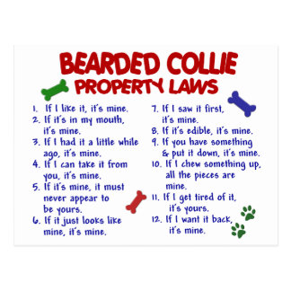BEARDED COLLIE Property Laws 2 Postcard