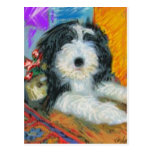 Bearded Collie Puppy Postcard