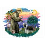 Bearded Collie (slate-white) Postcards
