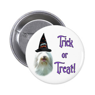Bearded Collie Trick Pins