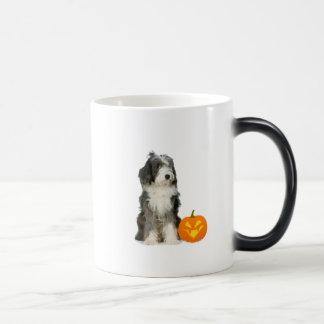 Bearded Collie With Pumpkin Mug