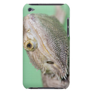Bearded dragon 2 barely there iPod cover