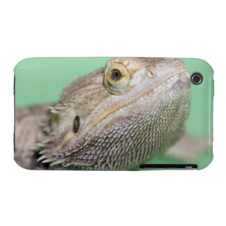 Bearded dragon 2 Case-Mate iPhone 3 case