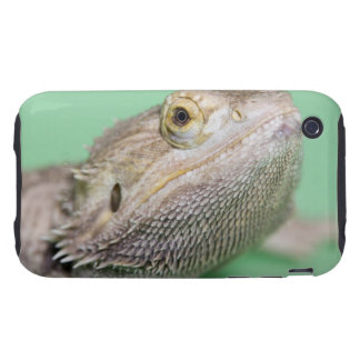 Bearded dragon 2 iPhone 3 tough cover