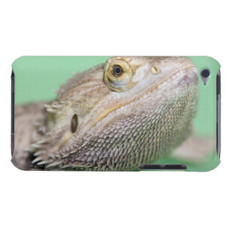 Bearded dragon 2 iPod Case-Mate case