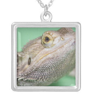 Bearded dragon 2 silver plated necklace