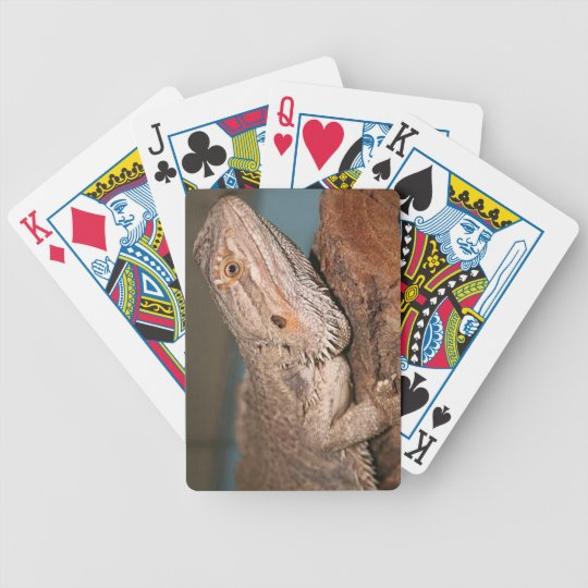 Bearded Dragon Bicycle Playing Cards
