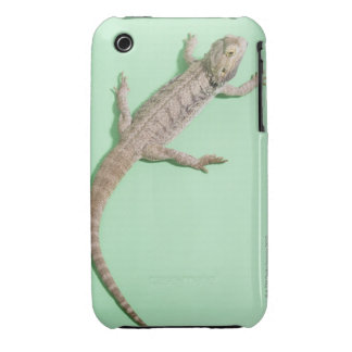 Bearded dragon Case-Mate iPhone 3 case