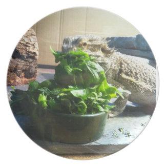 Bearded Dragon eating salad Dinner Plate