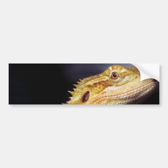Bearded Dragon Head 2 Bumper Sticker