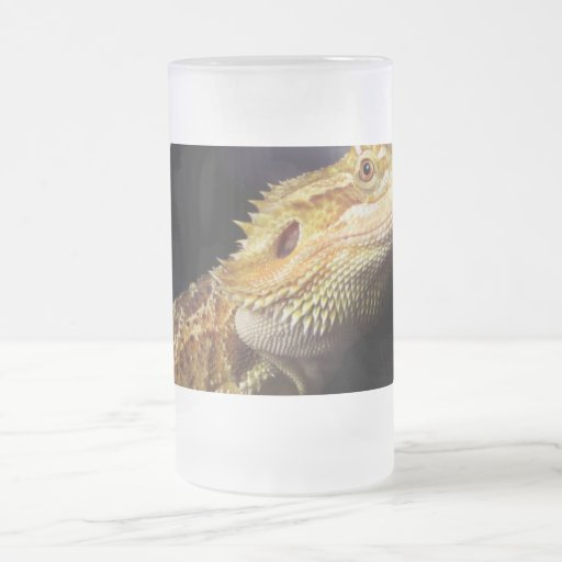 Bearded Dragon Head 2 Frosted Glass Beer Mug