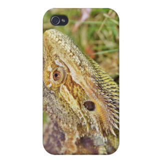 Bearded Dragon Head iPhone 4/4S Case