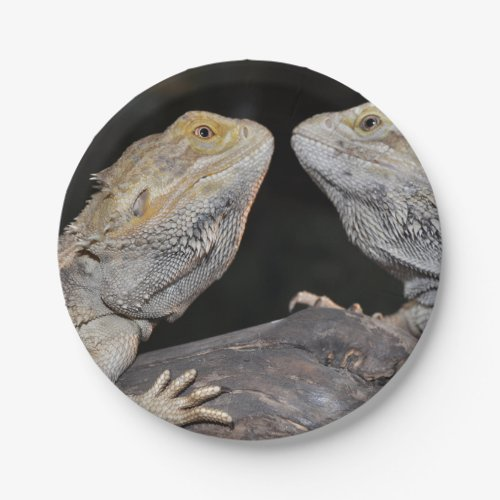 Bearded dragon paper plate