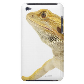 Bearded dragon (Pogona Vitticeps) Barely There iPod Case