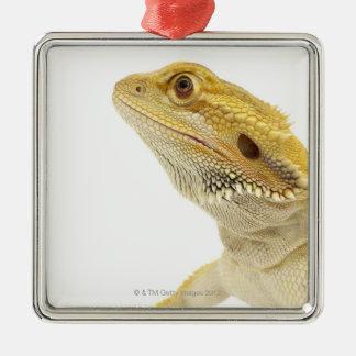 Bearded dragon (Pogona Vitticeps) Metal Ornament