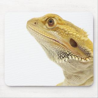 Bearded dragon (Pogona Vitticeps) Mouse Pad