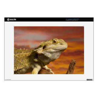 "Bearded dragon (Pogona Vitticeps) on branch, 15"" Laptop Decals"