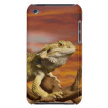 Bearded dragon (Pogona Vitticeps) on branch, iPod Touch Covers