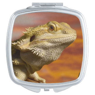 Bearded dragon (Pogona Vitticeps) on branch, Compact Mirror