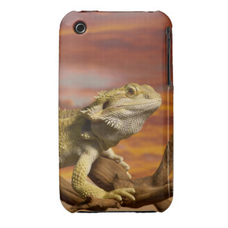 Bearded dragon (Pogona Vitticeps) on branch, iPhone 3 Cover
