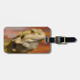Bearded dragon (Pogona Vitticeps) on branch, Luggage Tag