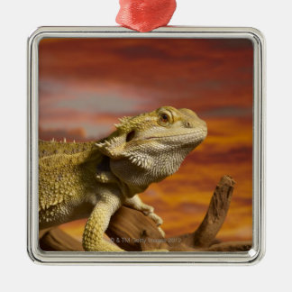 Bearded dragon (Pogona Vitticeps) on branch, Metal Ornament