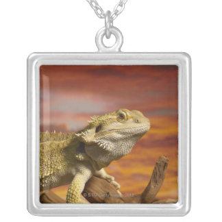 Bearded dragon (Pogona Vitticeps) on branch, Silver Plated Necklace